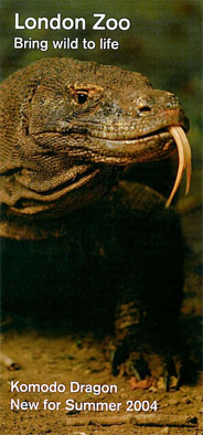 "London Zoo  ""Faltblatt: bring wild to life; Komodo Dragon"""