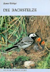 Ölschlegel, Helmut  Die Bachstelze. Motacilla alba (Neue Brehm-Bücherei Heft 571)