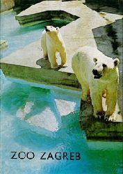 Zagreb Zoo  Zooführer (Eisbären)