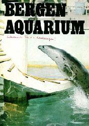 Bergen Aquarium, Norwegen  Führer (Seehund)