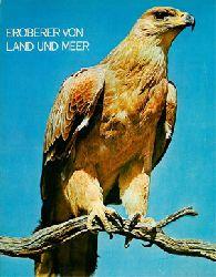 Eroberer von Land und Meer - Die Geheimnisse der Tierwelt - Band 6 - Vögel 2