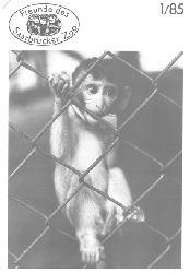 Zoo Saarbrücken  Zeitung der Freunde des Zoos, Ausg. 1, 1985