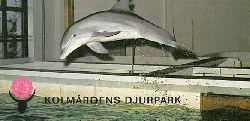Zoo Kolmarden  Kurzinfo mit Ãœbersichtszeichnung (Delphin)