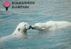 Zoo Kolmarden  Kurzinfo mit Lageplan (Eisbären)