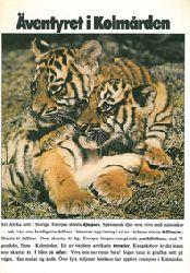 "Zoo Kolmarden  Ã""ventyret i Kolmarden - Info mit Lageplan (2 Tigerjunge)"