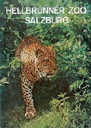 Salzburger Tiergarten Hellbrunn  Parkführer (Leopard)