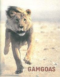 Zoo Basel  GAMGOAS - Der Ort, wo die Löwen sind