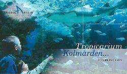 Zoo Kolmarden  Tropicarium Kolmarden … The wonders of nature (Kinder vor Aquarium mit Hai)