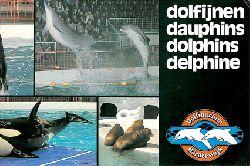 Dolfinarium Harderwijk  Dolfijnen, dauphins, dolphins, Delphine (Info über Delphine und das Delphinarium)