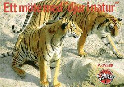"""Boras Djurpark  Ett möte med """"djur i natur"""" Faktaguide (Tiger)"""