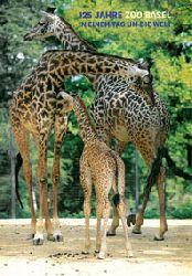 Zoo Basel   125 Jahre Zoo Basel, in einem Tag um die Welt