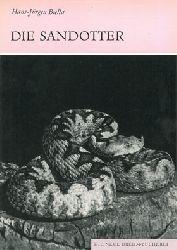 Biella, Hans-Jürgen  Die Sandotter. Vipera ammodytes. (Neue Brehm-Bibliothek, Heft 558)
