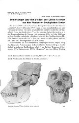 """""""Angst, Ralf; Storch, Gerhard""""  Bemerkungen über den Schädel des Gorilla Abraham aus dem Frankfurter Zoologischen Garten. Auszug aus der Zeitschrift: Natur und Museum 97, S. 417-420"""