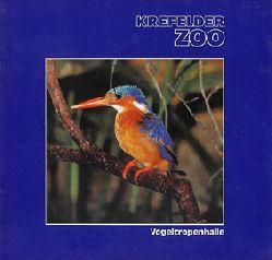 Krefelder Zoo  Vogeltropenhalle, (violett, Eisvogel)