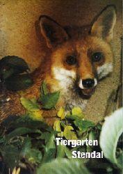 Tiergarten Stendal  Parkführer (Fuchs)