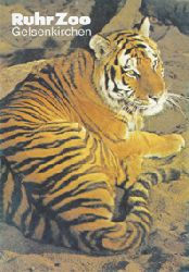 Ruhr-Zoo Gelsenkirchen  Wegweiser (Tiger)