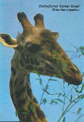 Zoo Basel  Orientierungsplan (Giraffenkopf)