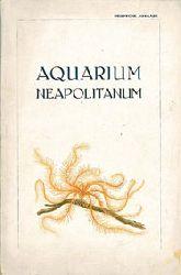 Acquario di Napoli  Führer, 8. Auflage