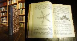 Claus, C.  Lehrbuch der Zoologie. 3. umbearbeitete und vermehrte Auflage.