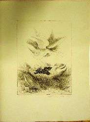 """Lehmden, Anton  1 Originalradierung, """"Fisch und Vogel"""". Eigenhändig mit Bleistift signiert und datiert."""