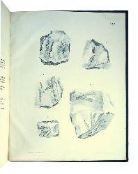 Abhandlungen der königl. Böhmischen Gesellschaft der Wissenschaften vom Jahre 1873.  9 Bände in 1 Band. (= Sechste Folge, sechster Band).