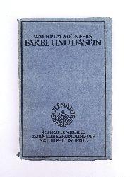 Steinfels, Wilhelm  Farbe und Dasein. Grundzüge zu einem symbolischen Weltbild. 1.-2. Tausend.