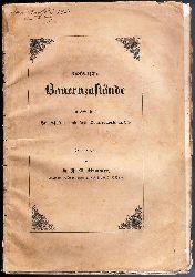 Böhmen - Brauner, F. A.  Böhmische Bauernzustände im Interesse der Landeskultur und des Nationalwohlstandes besprochen.
