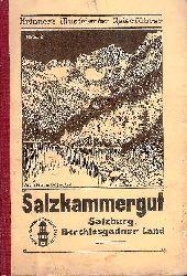 Salzkammergut und Grenzgebiete. Vom Gesäuse bis zum bayrischen Königsee. Behandelt das gesamte Salzkammergut, Salzburg Stadt und Umgebung, Berchtesgadner Land, Ennstal, Schladminger Tauern, Oberösterreich bis zur Donau.