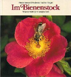 Fischer-Nagel, Heiderose und Andreas  Im Bienenstock - Wunderwelt der Honigbienen