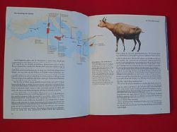 Attenborough, David:  Das erste Eden ... oder das verschenkte Paradies. Der Mittelmeerraum und der Mensch. Dt. von Rudolf Hermstein