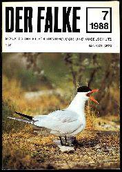 Der Falke. Monatsschrift für Ornithologie und Vogelschutz. Jg. 35. 1988 (nur) Heft 7.