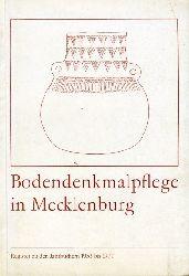 Nagel, Erika:  Bodendenkmalpflege in Mecklenburg. Register zu den Jahrbüchern 1953 bis 1977. I Chronologisches Verzeichnis der Titel und der Kurzen Fundberichte aus den Jahrbüchern 1953 bis 1977.