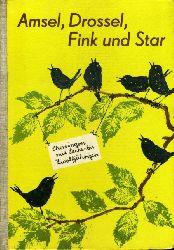 Lange, Christin:  Amsel, Drossel, Fink und Star. Chorsingen mit Sechs- bis Zwölfjährigen.