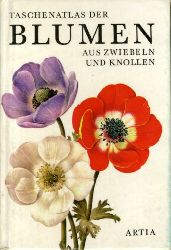 Petrová, Eva:  Taschenatlas der Blumen aus Zwiebeln und Knollen.