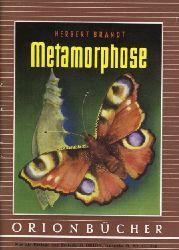 Brandt, Herbert:  Metamorphose. Orionbücher Bd. 119.