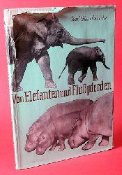 Schneider, Karl Max:  Von Elefanten und Flußpferden.