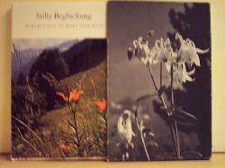 Jud, Karl [Ill.] und Albert [Hrsg.] Jud: Stille Beglückung : Bergblumen in Wort u. Bild Farbaufn. von Karl Jud. [Textausw.: Albert Jud]