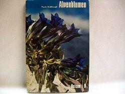 Kohlhaupt, Paula: Alpenblumen Farbige Wunder; Band 2 Alpenblumen in ihrer Umwelt und im Volksleben, mit 120 ganzseitigen Farbfotos