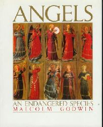 Godwin, Malcolm: Angels : An endagered species.