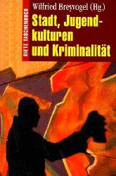 Breyvogel, Wilfried [Hrsg.]:  Stadt, Jugendkulturen und Kriminalität.