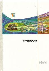 Tietz, Bruno  Die Stadt Ettlingen als Einzelhandels - Standort (Eine Analyse der Entwicklung von 1950-1980. Gutachten erstellt i.A. der Stadt Ettlingen...