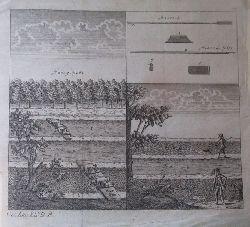 """Kupferstich """"Bauern bei der Feldarbeit / Aussaat / Ernte"""" (3 Darstellungen)"""