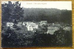Ansichtskarte AK Zwiesel. Villa Luise Auguste