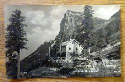 Ansichtskarte AK Loserhütte m. Gipfel. Altaussee