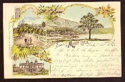 Ansichtskarte AK Souvenir de Monte Carlo (Litho. Les Terrasses et Jardins du Casino; Le Casino; Total)