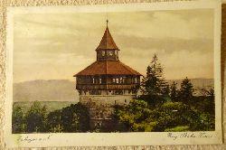 Ansichtskarte AK Esslingen. Burg (Dicker Turm)