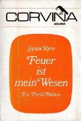 Illyes, Gyula,:  Feuer ist mein Wesen, (Ein Petöfi-Bildnis),