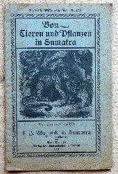 Warneck, D.J.  Von Tieren und Pflanzen in Sumatra (Der Jugend erzählt)