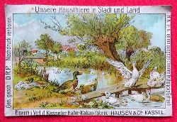 Reklamebild / Kaufmannsbild / Sammelbild Hausen