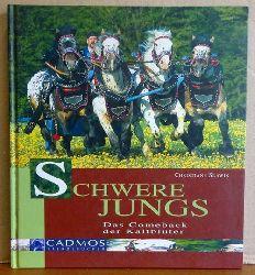 Slawik, Christiane  Schwere Jungs (Das Comeback der Kaltblüter)